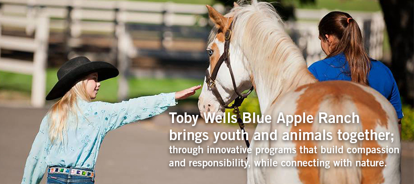 Toby Wells Blue Apple Ranch beings youth and animals together through innovative programs that build compassion and responsbility while connecting with nature.